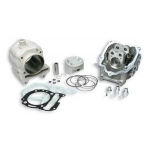 Gruppo termico completo Malossi in alluminio per motori 250