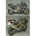 Terminale scarico racetech alluminio Aprilia rsv 1000